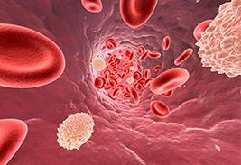 Уровень лейкоцитов в крови норма у мужчин