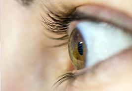 Каковы симптомы глаукомы